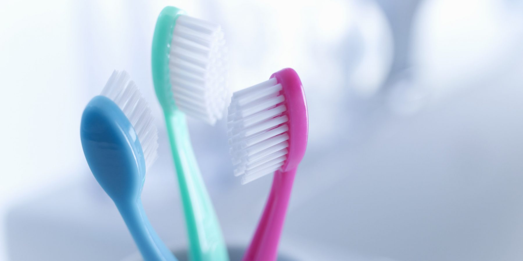 Close up of toothbrushes in holder